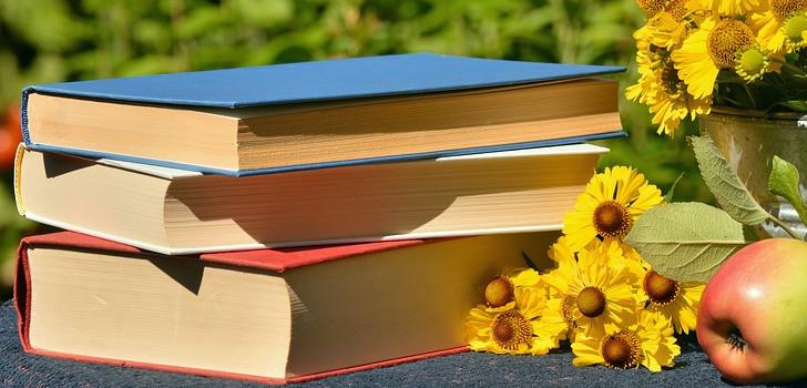 dags för bokbytardagen