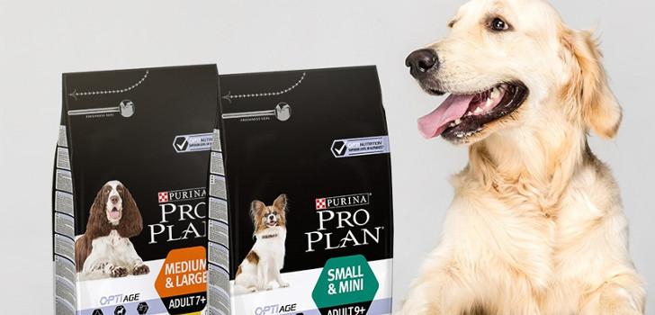 låt din hund testa ny mat