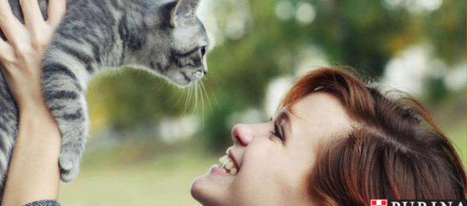 Gratis tävling för dig som har husdjur